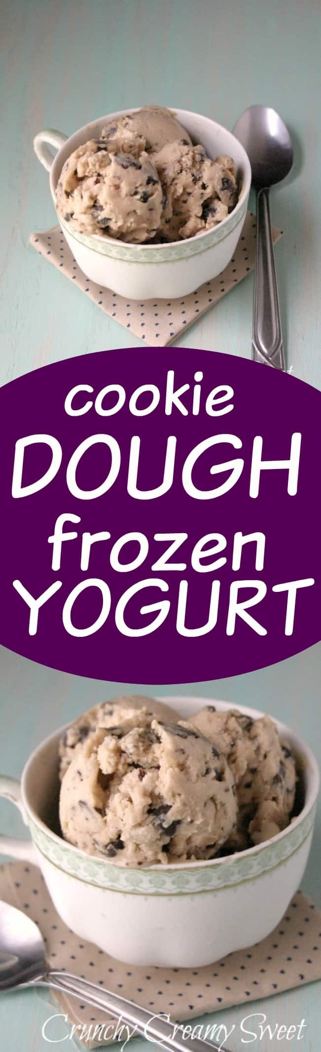 cookie dough frozen yogurt long CCC Monday: Chocolate Chunk Cookie Dough Frozen Yogurt