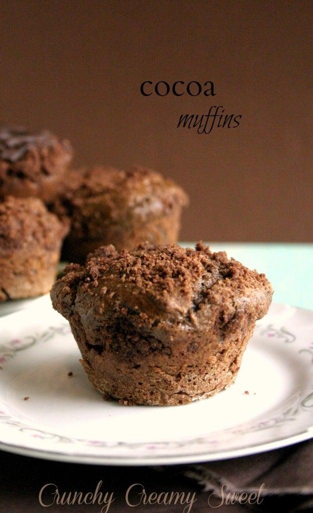 cocoa muffins 1 Cocoa Muffins
