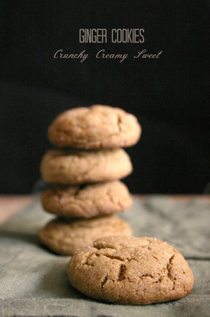 ginger cookies 3a1 National Cookie Day