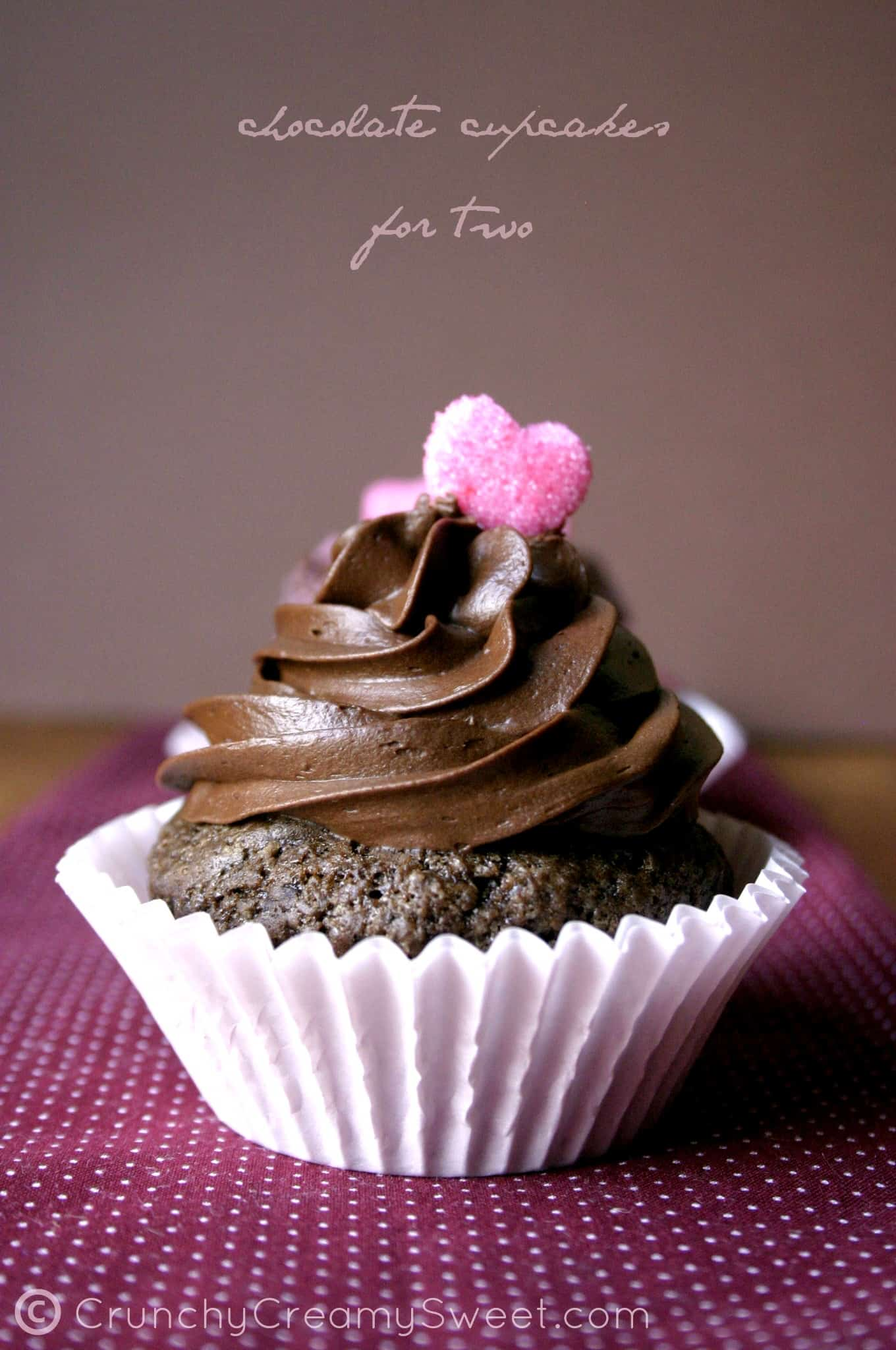 chocolate cupcakes for two A Chocolate Cupcakes For Two   Valentines Day Celebration Event