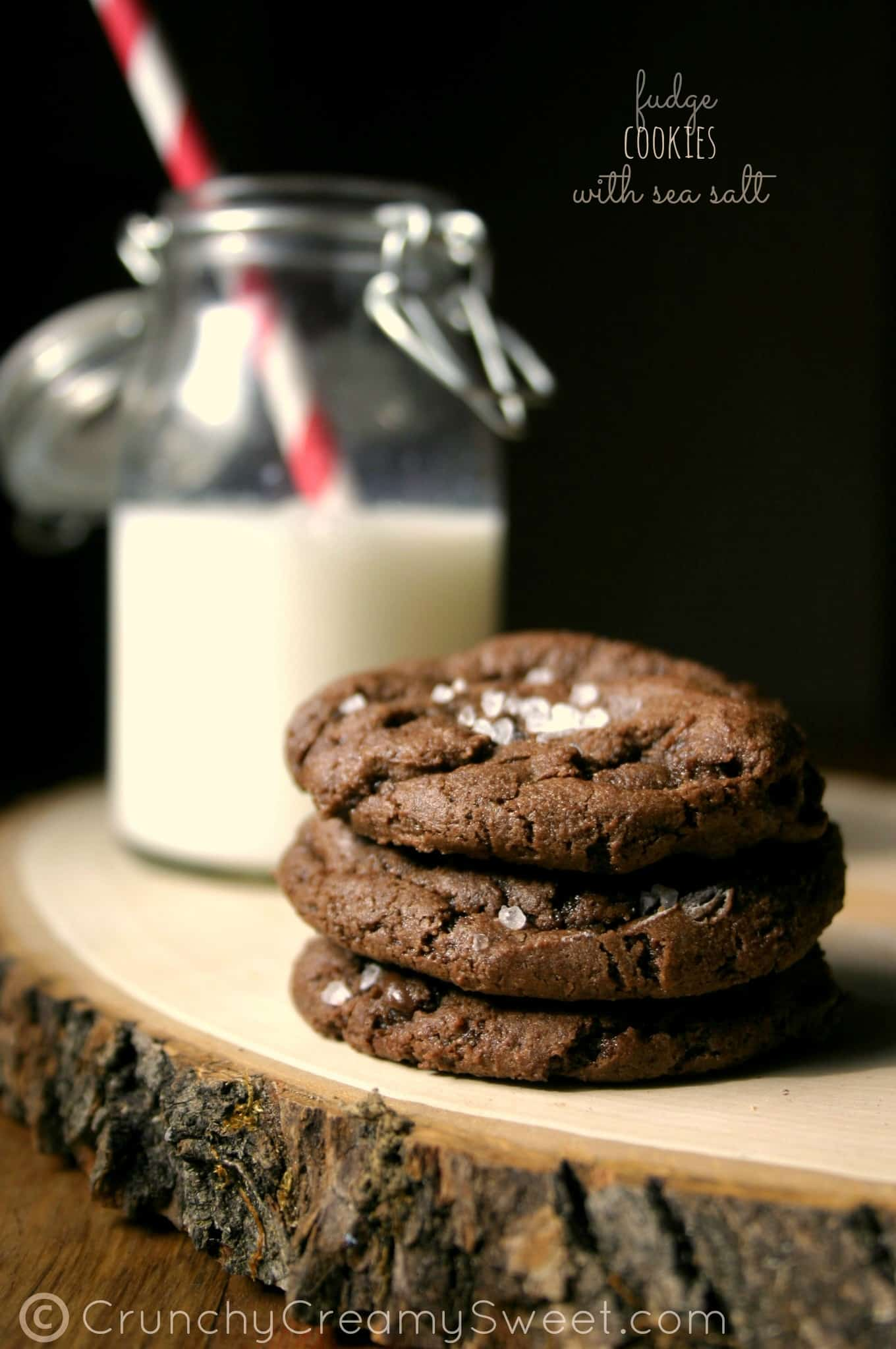 fudge cookiesA Chocolate Fudge Cookies with Sea Salt + GIVEAWAY!