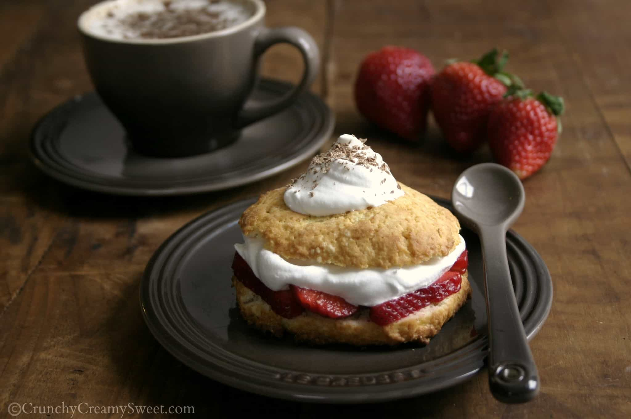 shortcakes 2 Strawberry Shortcakes