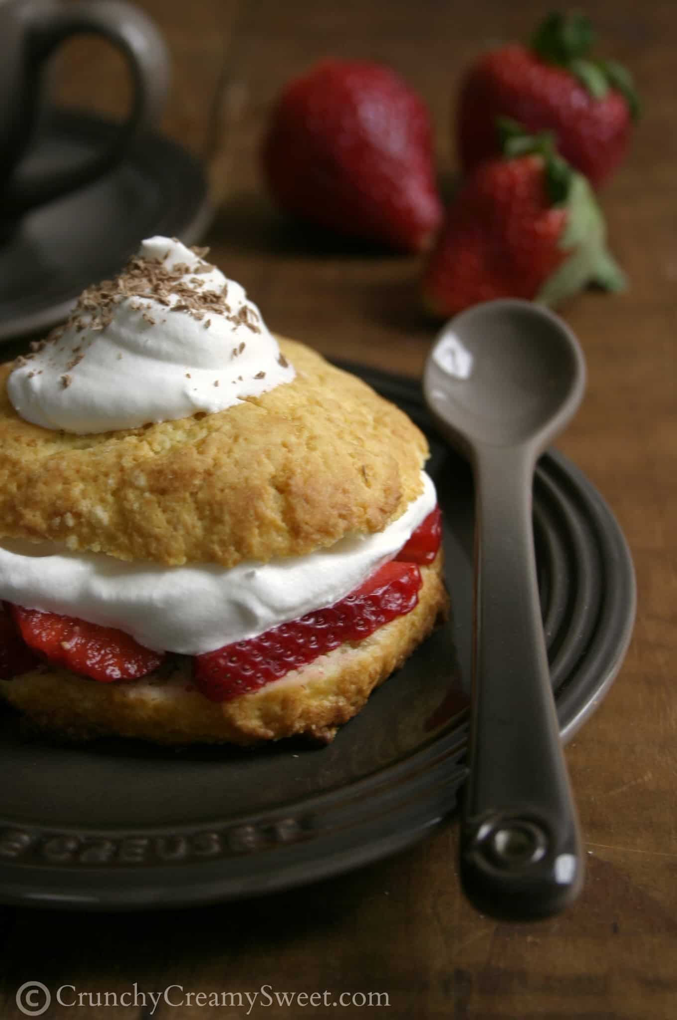 shortcakes 4 Strawberry Shortcakes