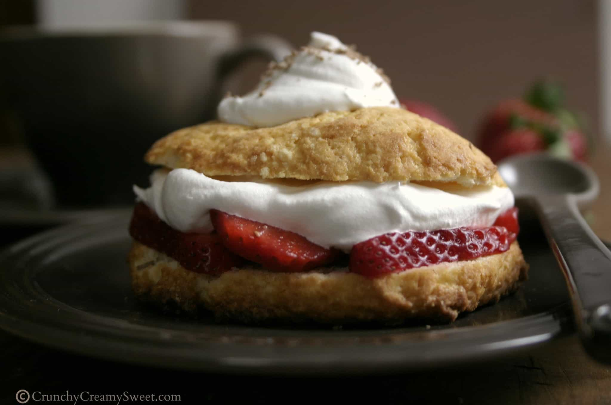 shortcakes3 Strawberry Shortcakes