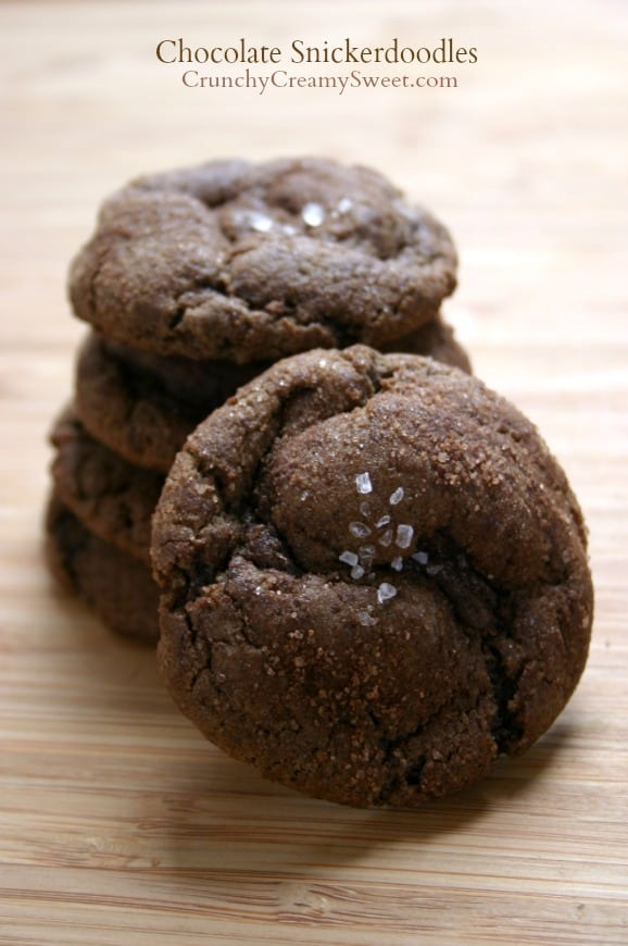 chocolate snickerdoodles 3 Chewy Chocolate Snickerdoodles