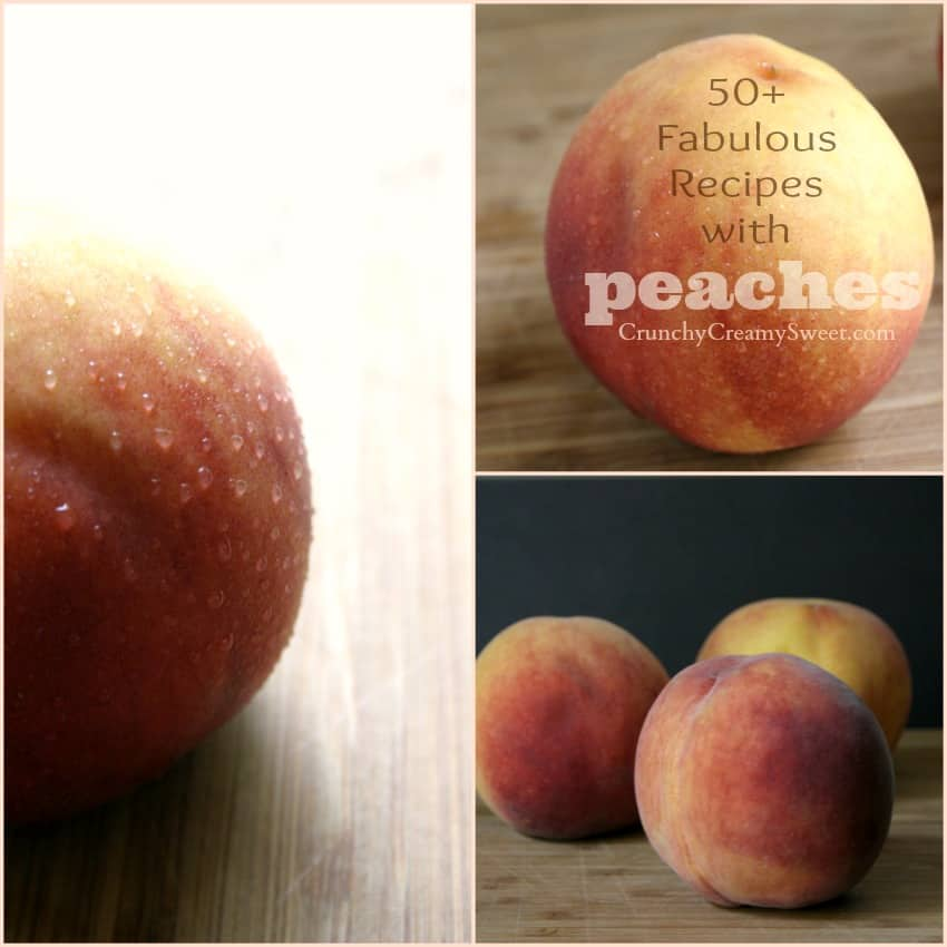 peaches top pic Sweet, sweet peaches! 50+ recipes with peaches (a round up)