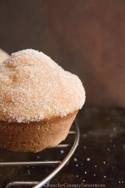 pumpkin donut muffins with cinnamon sugar coating 1 Cinnamon Sugar Coated Pumpkin Donut Muffins