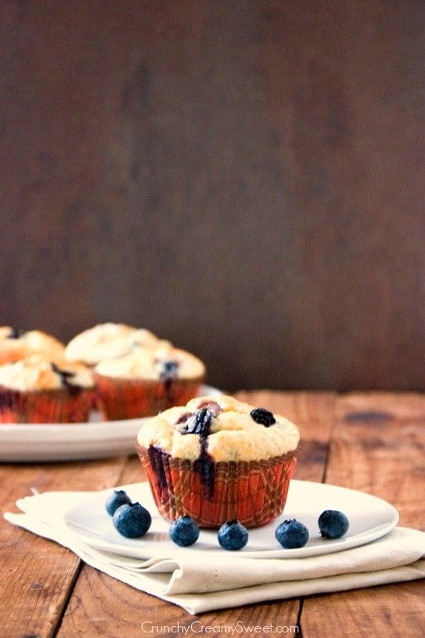Blueberry Muffins Blueberry Muffins Recipe