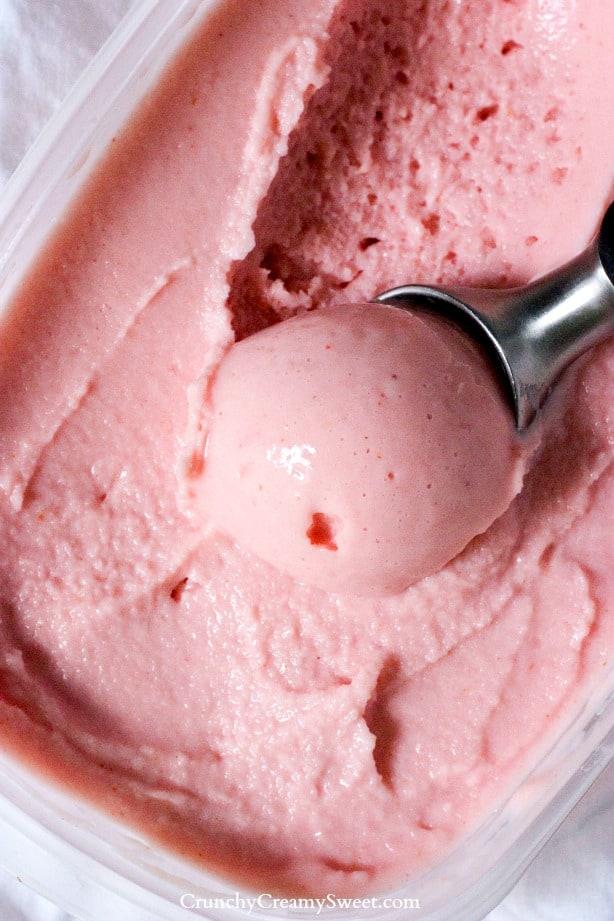 Strawberry Frozen Yogurt Berry Frozen Yogurt Recipe