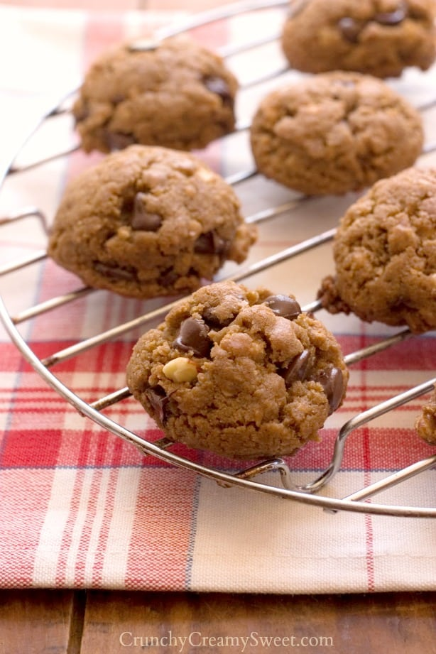 Peanut Butter Chocolate Granola Cookies Back to school Snack Ideas