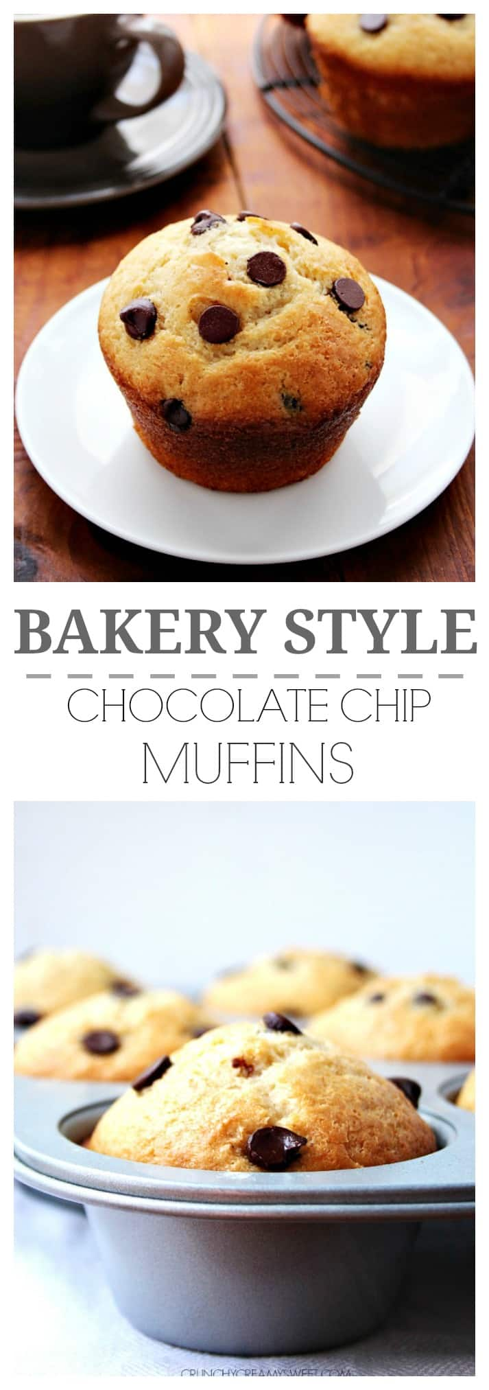 Perfect Bakery Style Chocolate Chip Muffins that you can bake at home ...