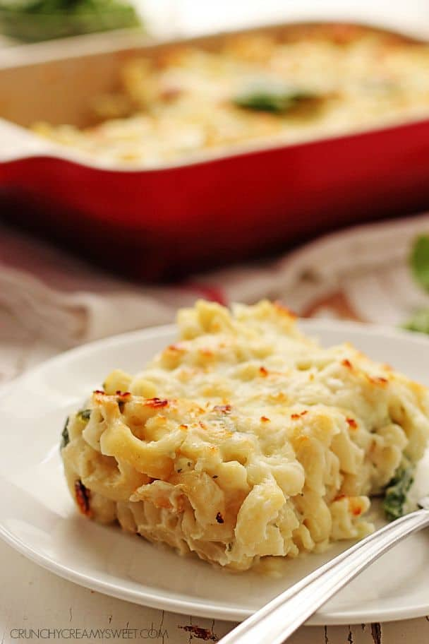 Healthy Cauliflower Sauce turns macaroni into a delectable and healthy dish @crunchycreamysw Skinny Fettuccine Alfredo Recipe