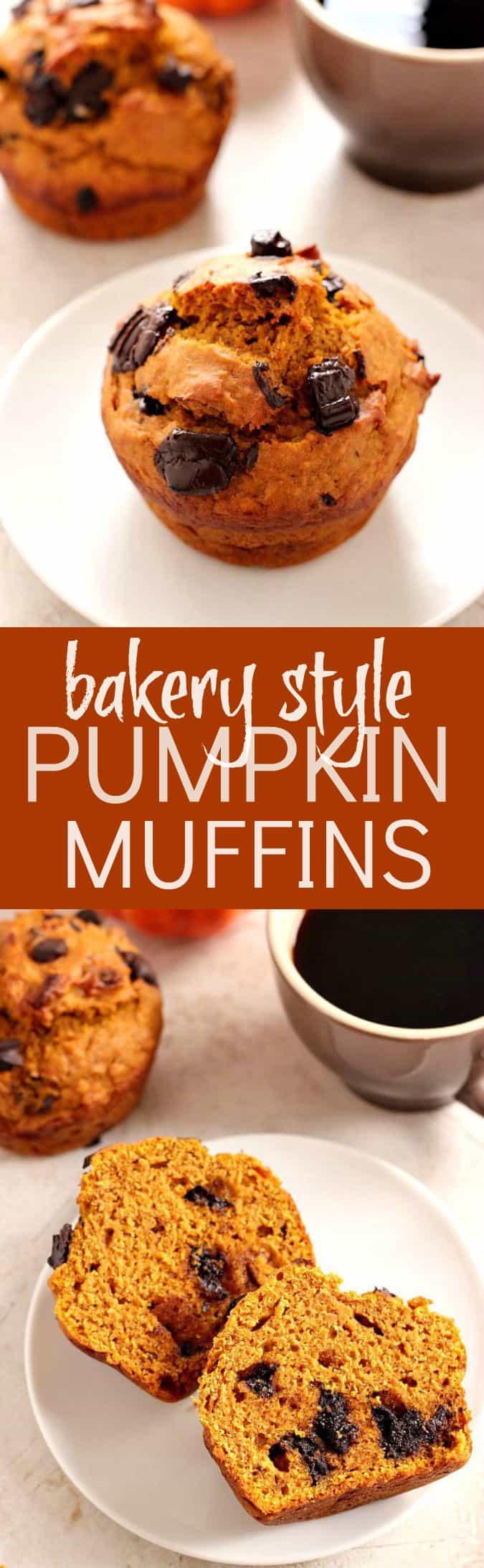 chocolate chunk pumpkin muffins long1 Bakery Style Chocolate Chunk Pumpkin Muffins