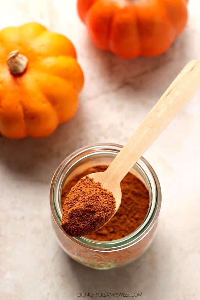homemade pumpkin spice 1 Snickerdoodle Pumpkin Cake