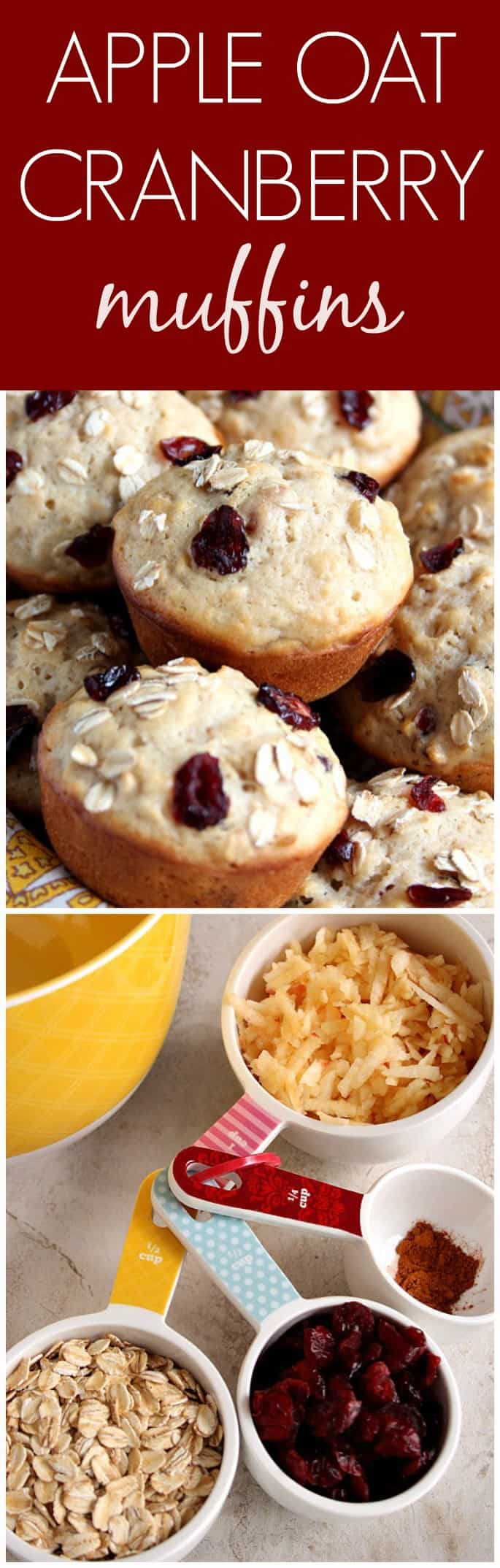 Apple Cranberry Oatmeal Muffins Recipe — Dishmaps