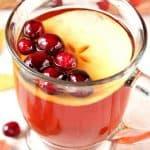 apple cranberry tea a 150x150 Apple Cranberry Slow Cooker Tea Recipe