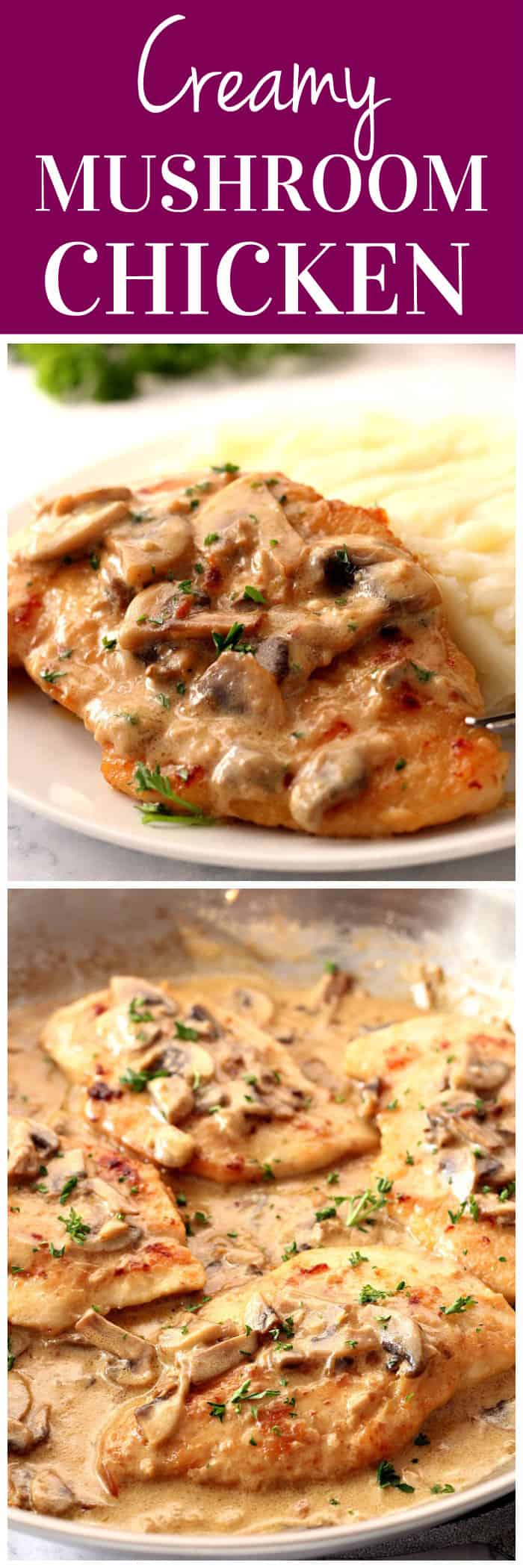 creamy mushroom garlic chicken recipe long1 Creamy Mushroom Garlic Chicken Recipe