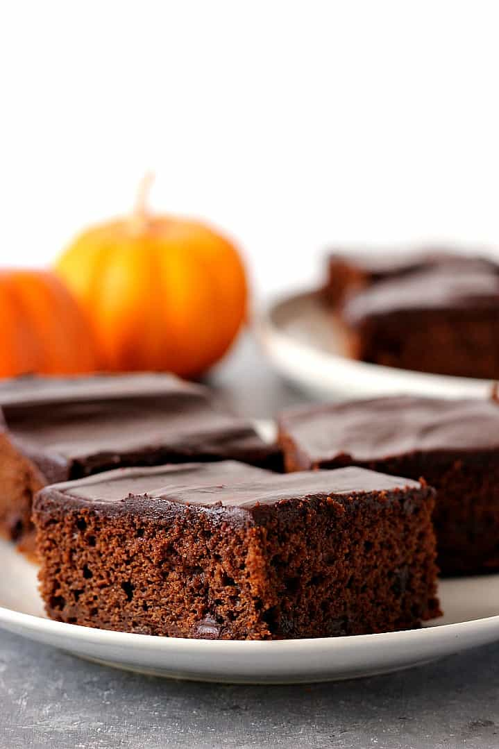 chocolate pumpkin cake recipe 5 Chocolate Pumpkin Cake Recipe