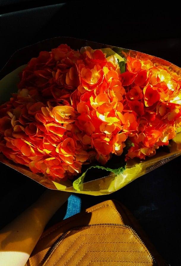 orange flowers Weekend Chat No.2