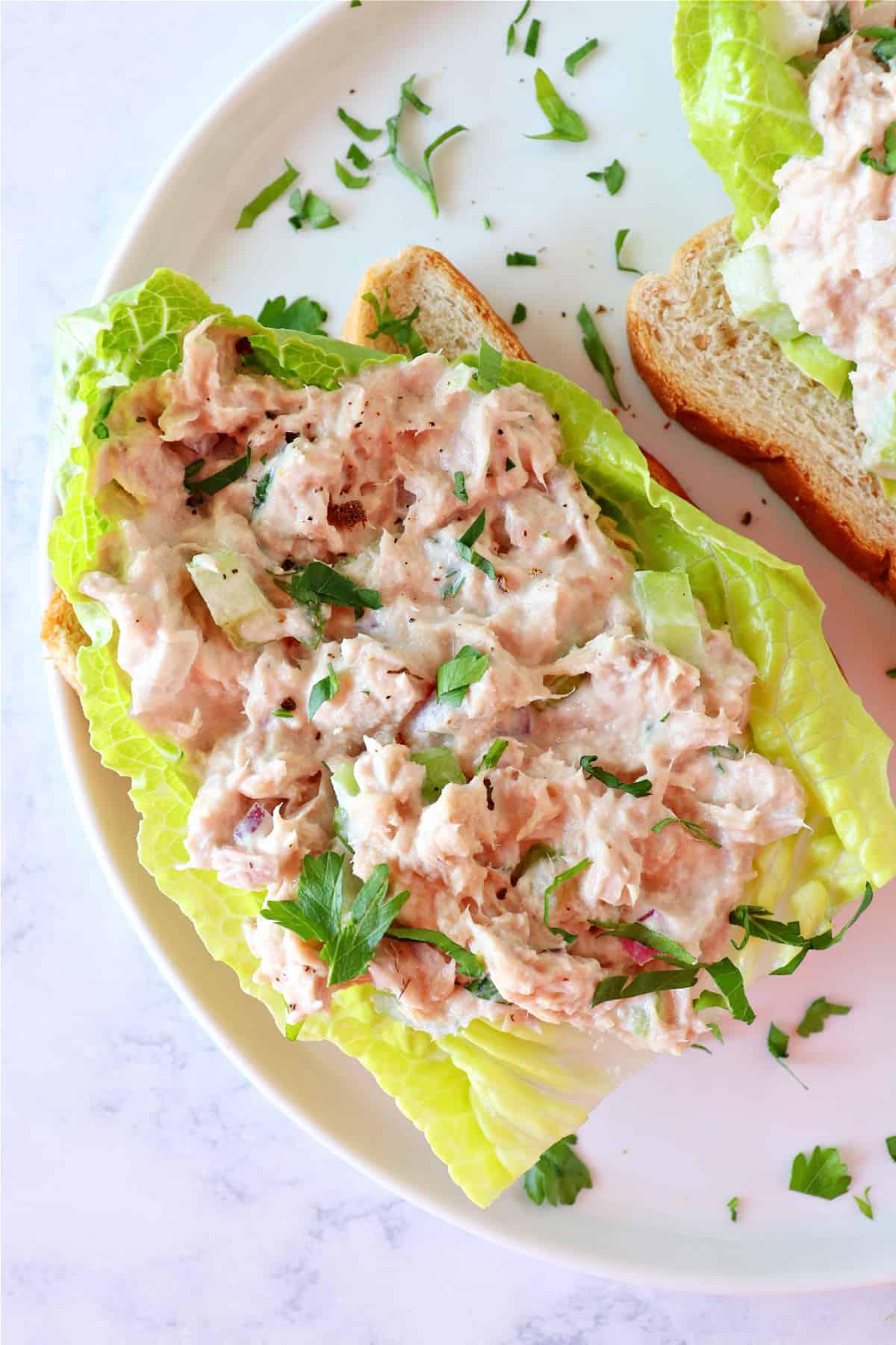 best tuna salad 2 Best Tuna Salad Recipe